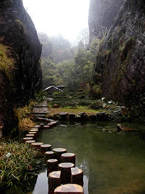 ферма Да Хун Пао