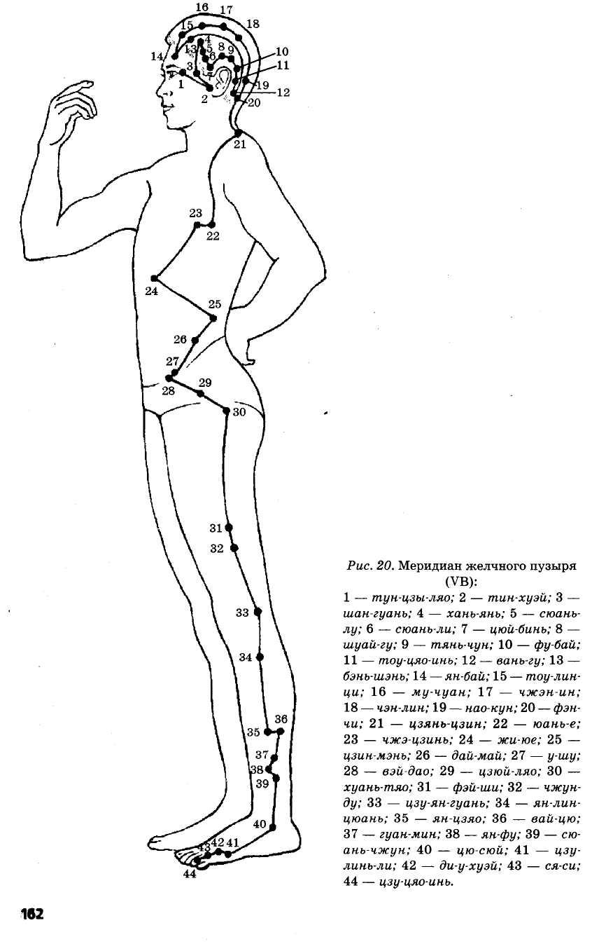 меридиан желчного пузыря