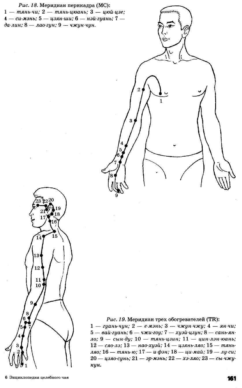меридиан перикарда и трех обогревателей