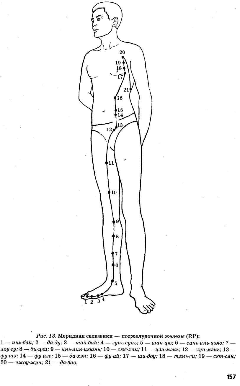 меридиан желудка-поджелудочной железы