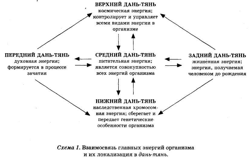 взаимосвязь главных энергий организма и их локация в дянь-тянь