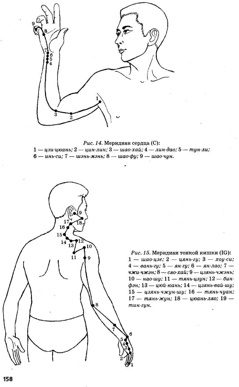 меридиан сердца и тонкой кишки