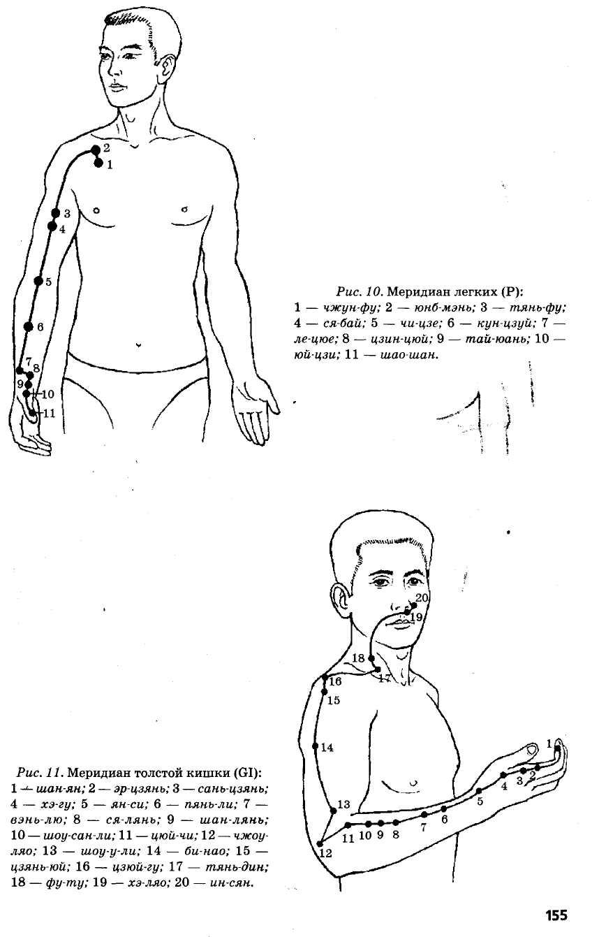 меридиан легких и толстой кишки